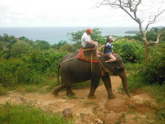 KokChang Safari Elephant Trekking: view in the background