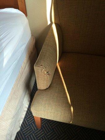 Hampton Inn & Suites Mystic: Shredded chair arm