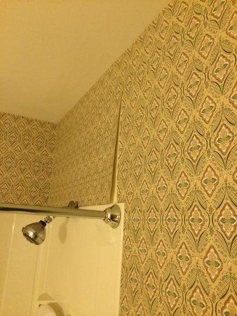 Wildflower Inn: Family meadow suite...wallpaper in the bathroom coming off in many locations!