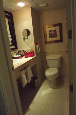 Dreams Punta Cana Resort & Spa: Suite Bath