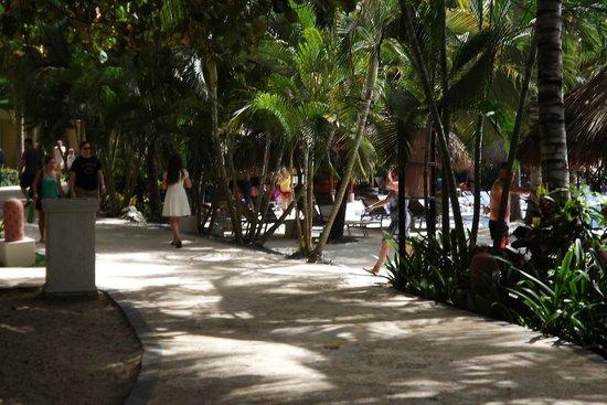 Dreams Punta Cana Resort & Spa: Hotel grounds