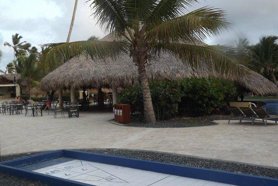 Dreams Punta Cana Resort & Spa: Beach Bar
