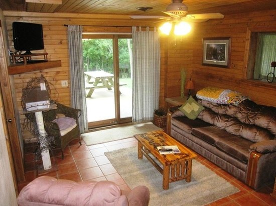 cabin 3 lower level with pull out couch picture of