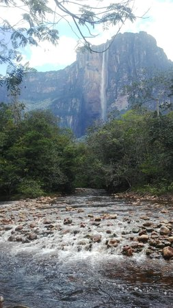 Jungle Rudy's Ucaima Camp: The view from the camp near Angel Falls