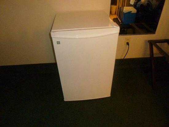 Royal Amsterdam Hotel: personal refrigerator