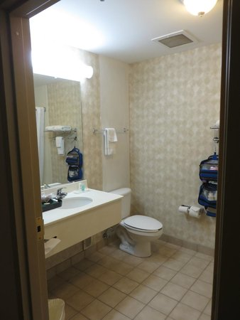 Holiday Inn Express Berea: Bathroom.