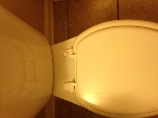Outer Banks Inn : busted toilet seat rm 210