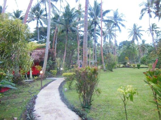 Mango Bay Resort Fiji: Resort grounds