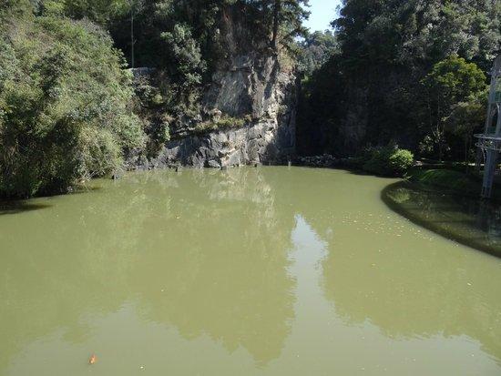Opera de Arame : Vista do lago