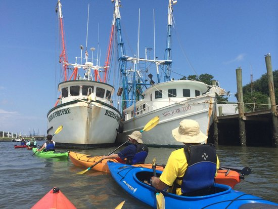 Nature Adventures : Among the fishing boats in Shem Creek