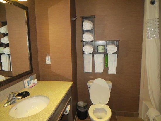Hampton Inn & Suites Springdale Zion National Park: Bathroom