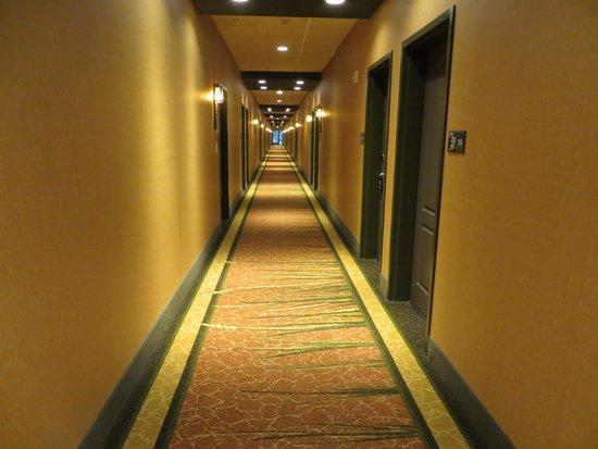 Hampton Inn & Suites Springdale Zion National Park: Hallways