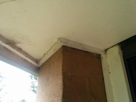 Mercure Resort Hunter Valley Gardens: Spiderwebs on the balcony