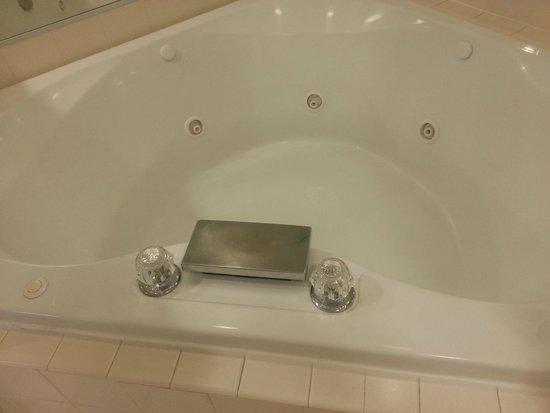 Greensprings Vacation Resort: Cheesy, heart-shaped tub