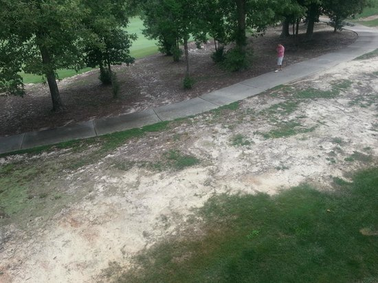 Greensprings Vacation Resort: View from the balcony; not pretty