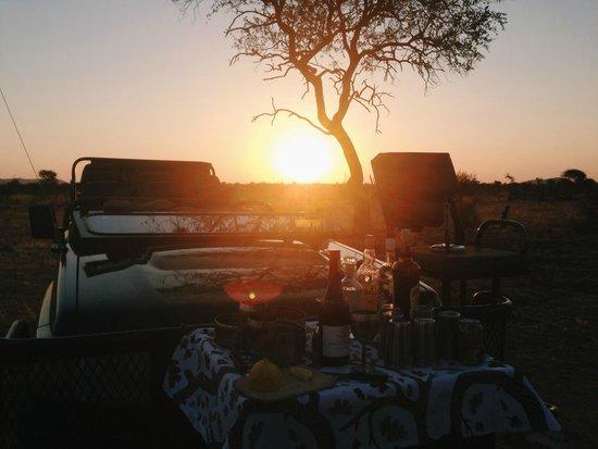 Madikwe Hills Private Game Lodge: Game drive