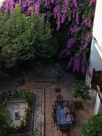 Casa del Aljarife - Granada: Courtyard