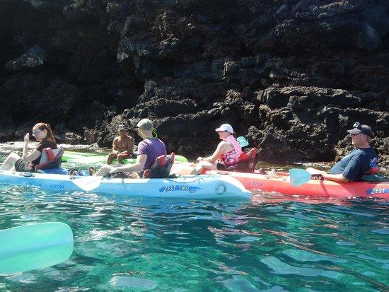 Ocean Safaris Kayak Adventures: the tour group
