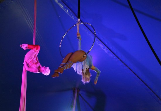 Circus World: Aerialists