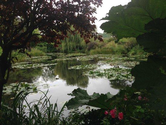 Maison et jardins de Claude Monet : Monet's pond and waterlilies