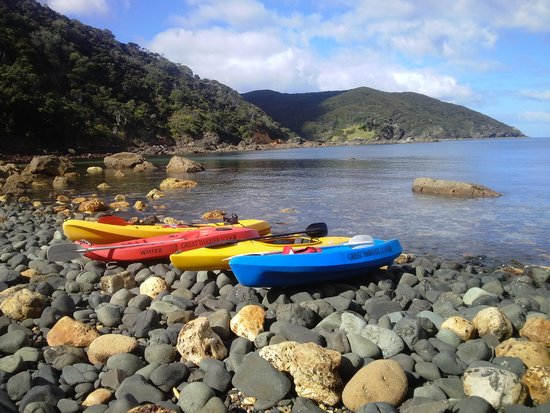 Great Barrier Lodge: Free Kayaks for our guests to use