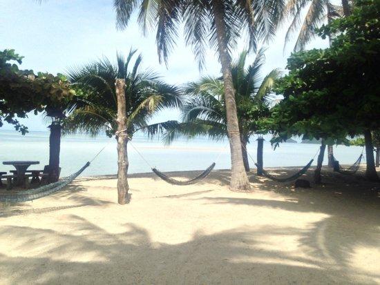 Dewshore Resort : The amazing hammocks