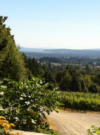 Hawley Place Bed and Breakfast: Averill Creek Winery, awesome view of the Cowichan Valley