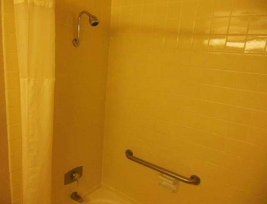 Clarion Hotel Anaheim Resort: Shower...clean and good hot water pressure