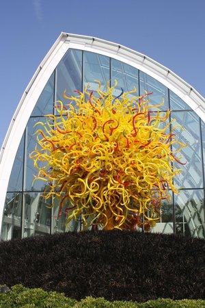 Jardín y cristal Chihuly: GARDEN
