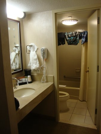 Tropicana Casino and Resort: The bathroom