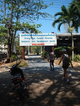 Amazing Bike Tours : Home of the turtles