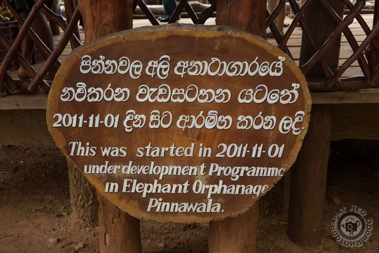Pinnawala Elephant Orphanage : One of the entry signs