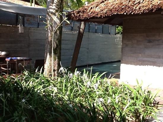 Indigo Pearl: outside spa suite
