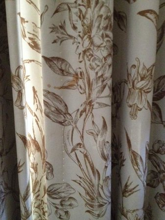 The Woodlands Resort & Conference Center: Stain on curtain