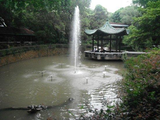 Kowloon Park: 亀のいる池、東屋でほっと一息