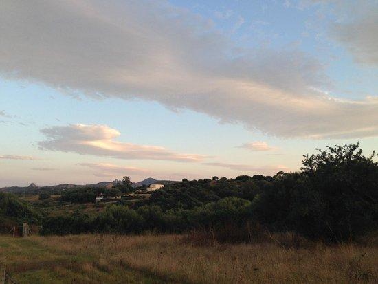 Agriturismo Candela: Landscape from the room