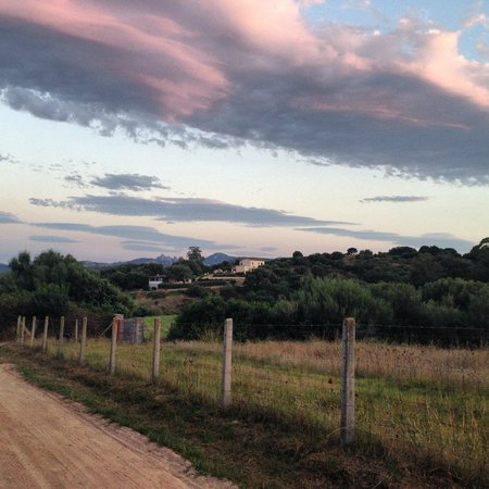 Agriturismo Candela: The countryside nearby
