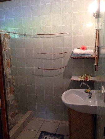 Pension Tapuheitini: Niquel la salle de bain !