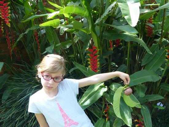 Swetha Villa : Joli jardin fleuri