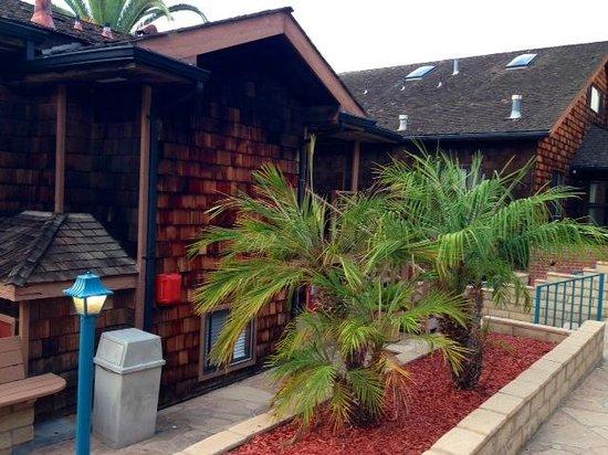 La Jolla Cove Hotel & Suites : Bungalow