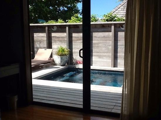 Hilton Moorea Lagoon Resort & Spa : the plunge pool