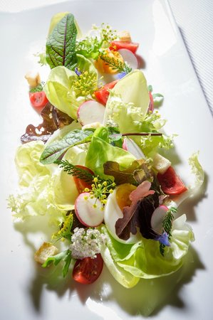 Restaurant Skipass: Salad with arugola, cucumber, radish, bread croutons and Feta cheese from Srednji Vrh