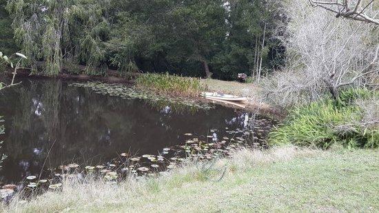 Peace of Eden: Stunning dam