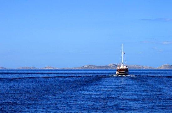 Kornati National Park: Excursion to Kornati Islands