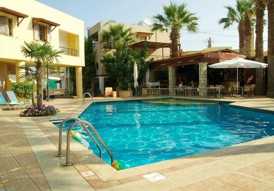 Latania: Pool area