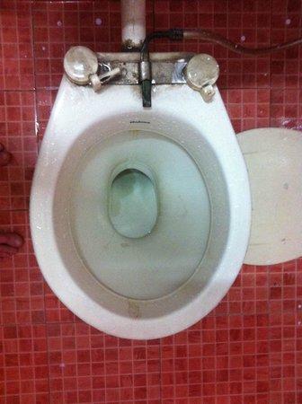 Hotel Hare Krishna: Broken off toilet seat