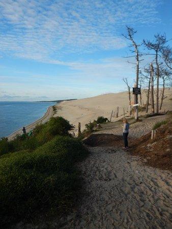Yelloh! Village Panorama du Pyla : chemin vers la plage avec emplacements de camping sur la droite
