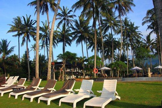 Candi Beach Resort & Spa : Gartenanlage