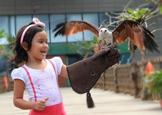 Photo provided by Manila Ocean Park