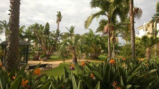 Suite Hotel Eden Mar: Haven på hotelområdet